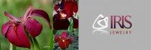 <!--:en-->IRIS Jewelry Logo<!--:--><!--:th-->ไอริส จิวเวอร์รี่ โลโก้<!--:-->