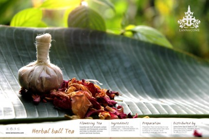 <!--:en-->Herbal Ball Tea (Prototype)<!--:--><!--:th-->ชาลูกประคบ (Prototype)<!--:-->